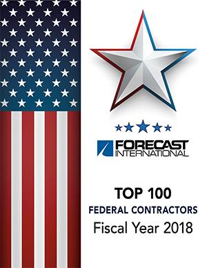 Top 100 Federal Contractors